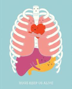 heart lungs